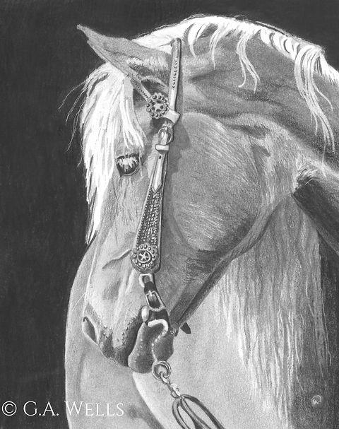 horse gray WM.jpg