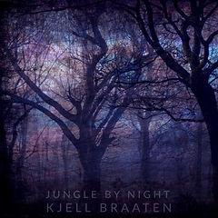 Kjell Braaten - Jungle By Night 3.jpg