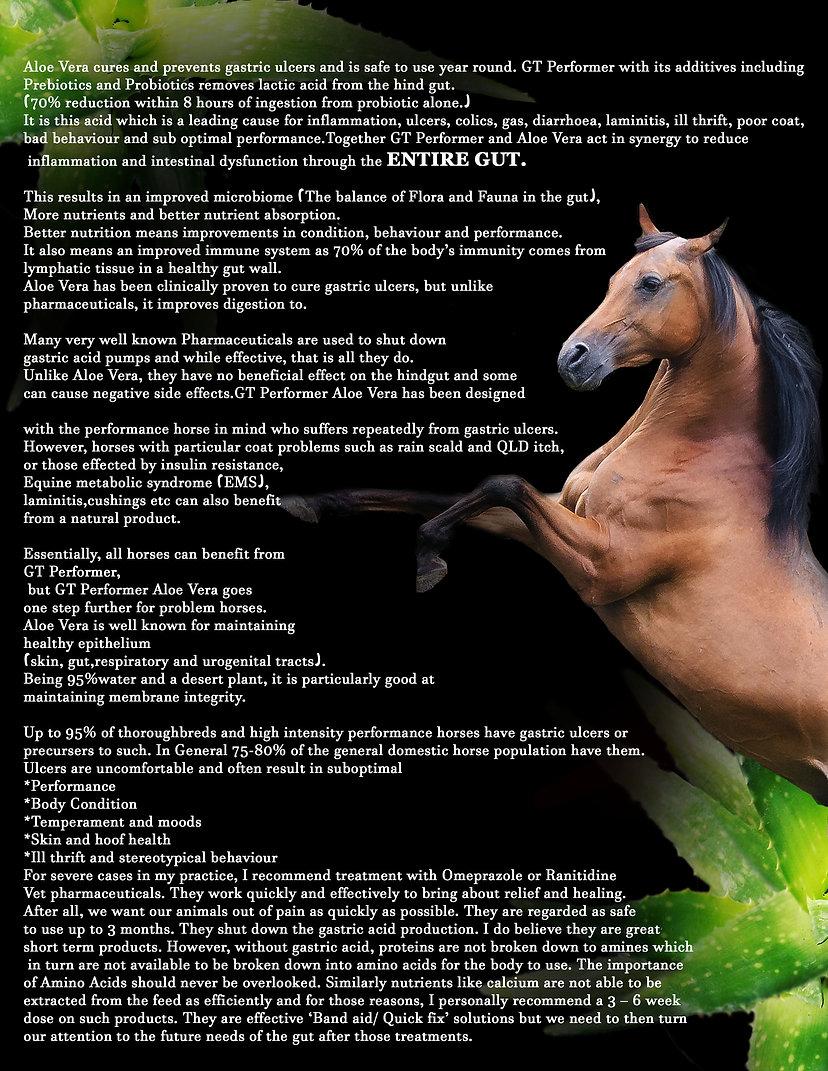 GT Performer Aloe brochure page 1.jpg