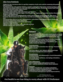 Aloe brochure page 2.jpg