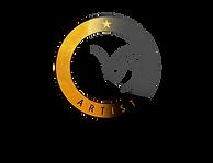 logo_ARTIST_Pavlína Novotná.png