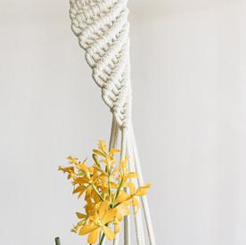 DNA macrame plant hanger-3.jpg