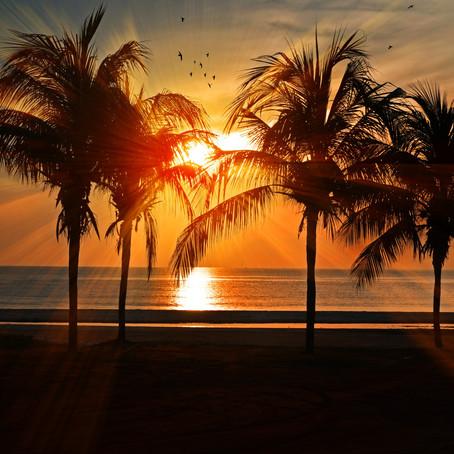 ¿Extrañas la playa? Aquí el Top 5 de rolas para sentir que la vida es más sabrosa