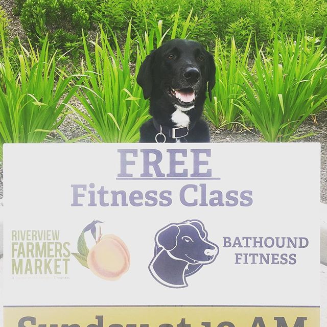 Fitness in the park!