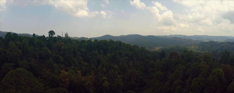 AETEA - Yunnan