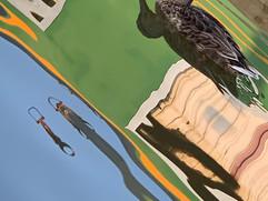 quack pauline.jpg