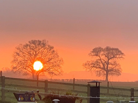 sunrise pauline.jpg
