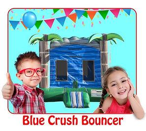 Blue Crush Bouncer.jpg