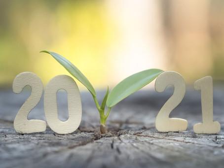 WINDERMERE INSIGHTS: WHAT THE MARKET HOLDS IN 2021