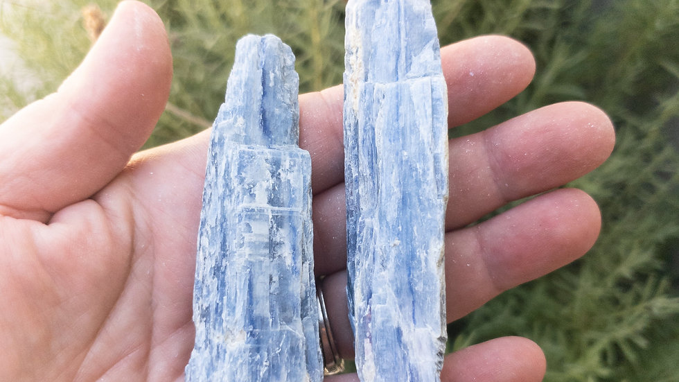 """Blue Kyanite Blades Third Eye Crystals """"Psychic Stone"""" FAST in USA Shipping"""