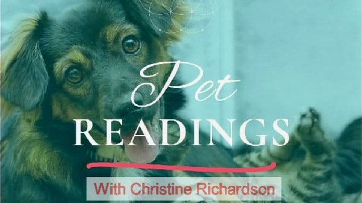 Telepathic Animal Communication Emailed Video Reading in 72hrs w/ Follow Up Call