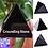 Thumbnail: Black Obsidian Crystal Pyramid -Grounding, Decision Making & Aura Clearing Stone