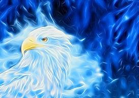 eagle blue light for emails