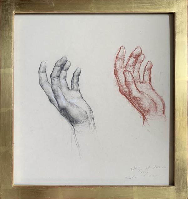 Hand Study for Prehendo