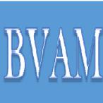2. BVAM.png