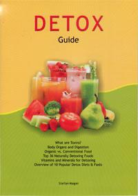 Stefan Mager - Detox Guide