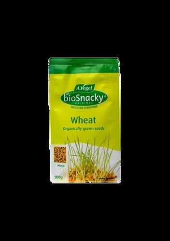 Biosnacky - Wheat Seeds