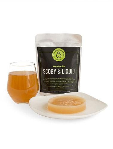 Happy Belly Probiotics - Kombucha Scoby Liquid