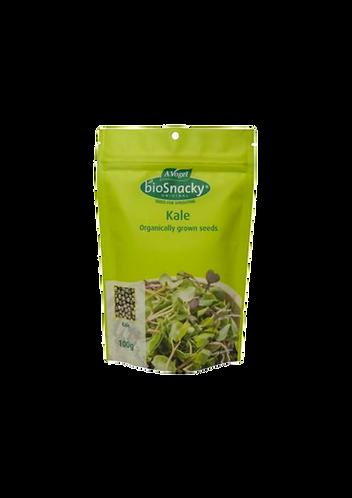 Biosnacky - Kale Seeds