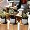 Thumbnail: Movinka - Flame to Flora Candle Kit