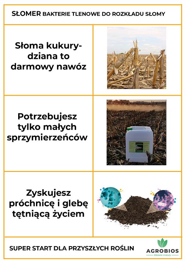 tabelka_słomer_pom.png
