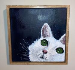 Cat acrylics