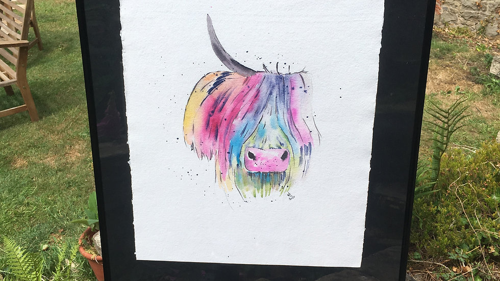 Coloured cow