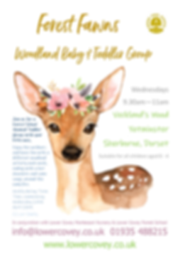 Forest Fawns Poster.png