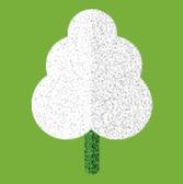 Forest School Tree Logo.jpg