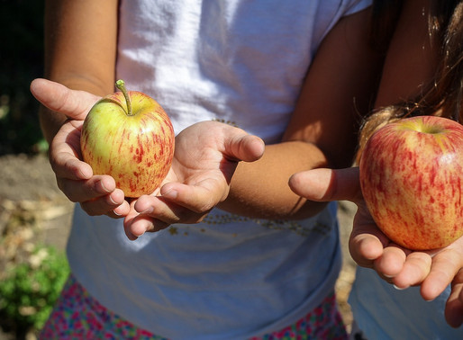 Eric Aft: Supporting Access to Healthy Food Can Help Our Children