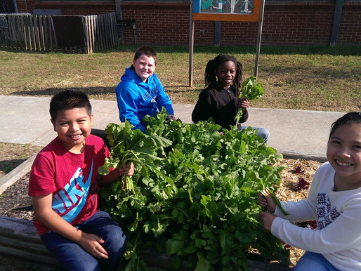 Updates from the Panda Patch: An Alamance County School Feeds Futures