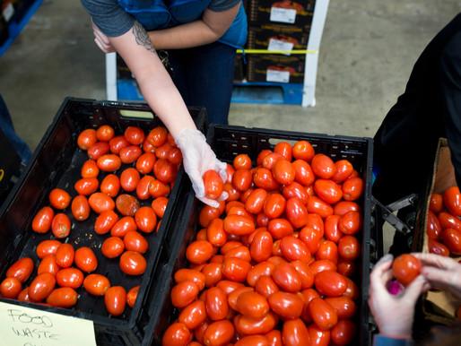 Feeding Health: Why Fresh Food Matters