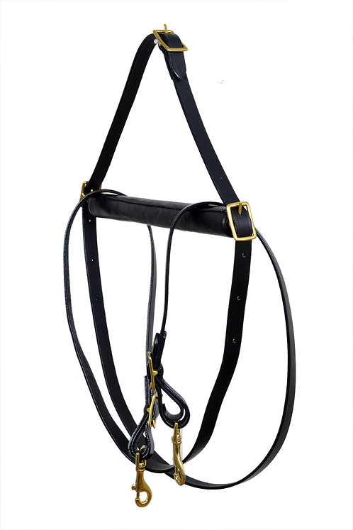 Dara's Bar Reins for One Hand Riding