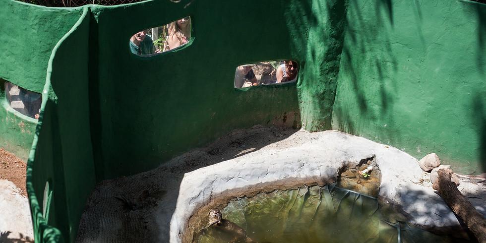 Visite o Projeto Lontra