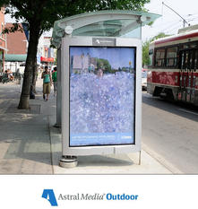 TRANSIT SHELTERS - IN ACTION