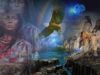 Totem Animal Wisdom & Guidance