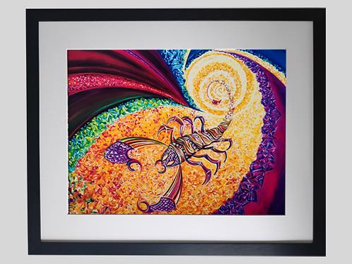 Fine Art Print gerahmt  Skorpion SCHATZMEISTER
