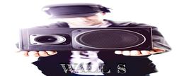 Wall S
