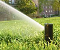Irrigatie 3 - Rain Bird pop-up sproeier.