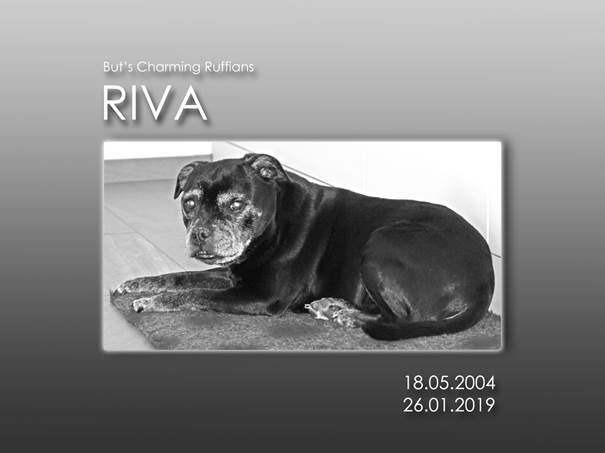 BCR Riva