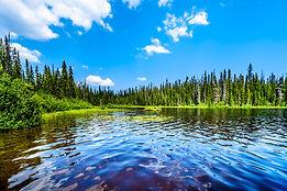 environment-water.jpg