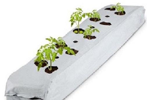Coconut Coir Products - Grow Bag