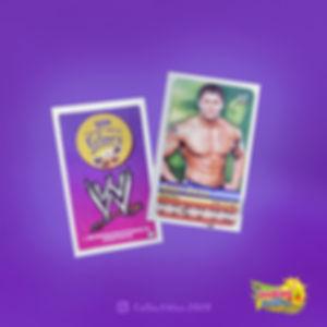 WWE Echlairs Cards.jpg