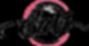 savi logo transparent.png