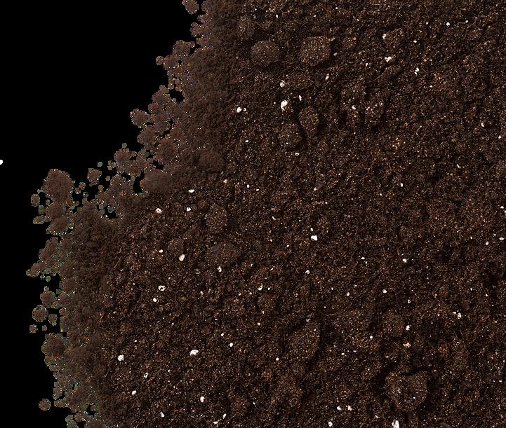 Dirt more full for dark background.png