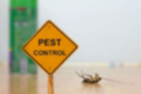 Interior and exterior pest control