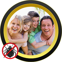 Royal Pest Control pest elimination. Professional and reliable
