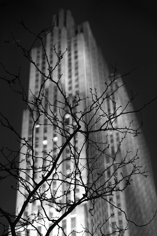 New York 2011 © Patrick Tombelle