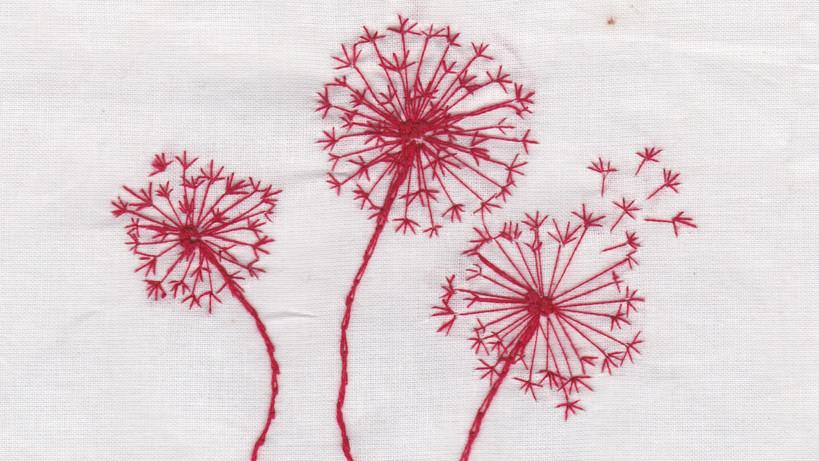 Dandelions.jpeg
