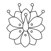 Bitterroot Flower v.1